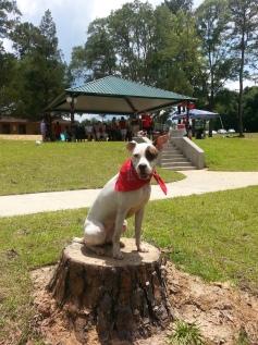 5. Dani at the Park