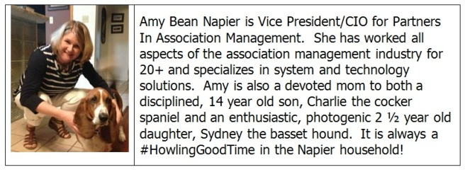 2016 Amy Bean Napier