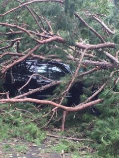 car-damage